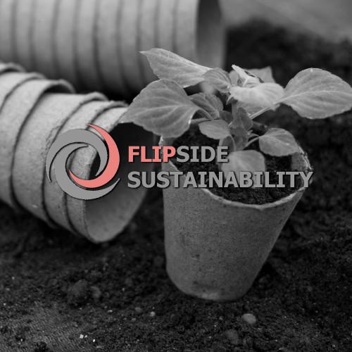 flipside-homepage-2